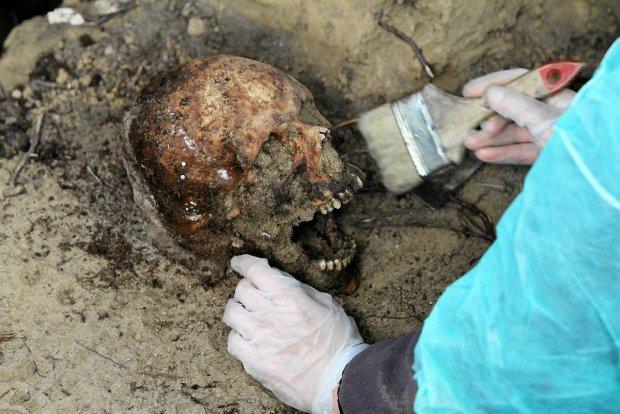 ekshumacje