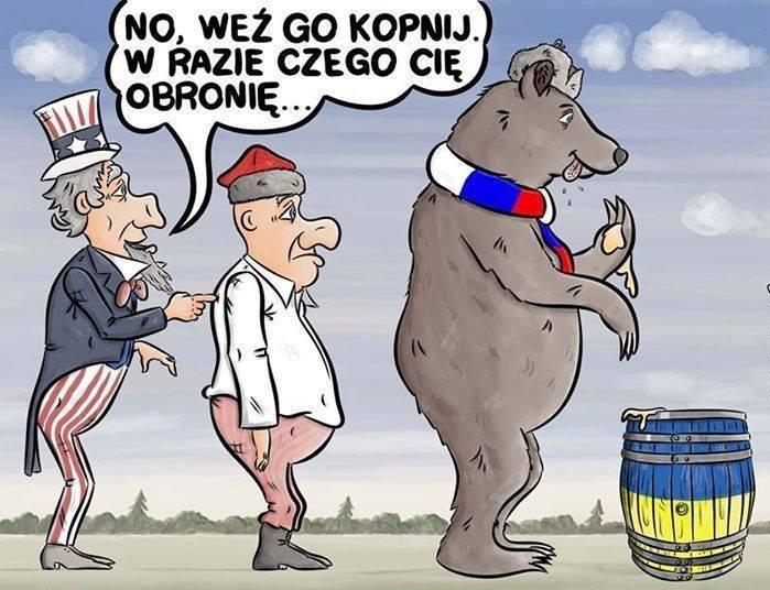 USA • POLSKA