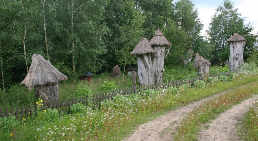 Pasieka_Kleszczele_2_11.07.2009