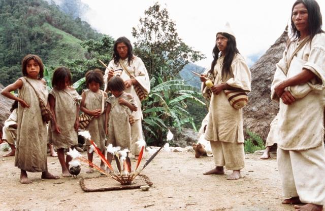 indianie kogi